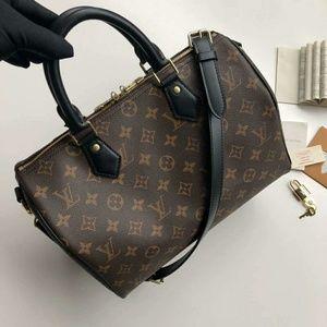 Louis Vuitton Speedy Bag New Check Description